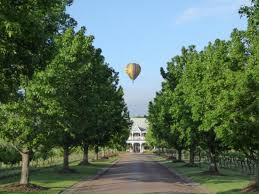 Team Building in the Hunter Valley